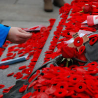 Remembrance Day ceremonies at the Tomb of the Unknown Soldier in Ottawa, Canada